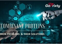 Common Problems Encountered During Production of Recombinant Proteins and their Solutions